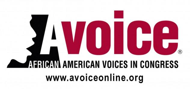 Avoice logo with web address (R)